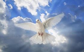 Het Werk van de Heilige Geest